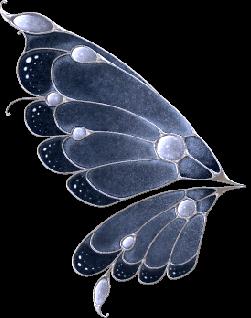 Aile De Papillon Dessin ailes papillon 2